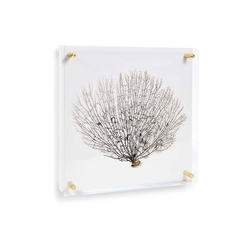 Sea Fan Wall Art on Acrylic Small