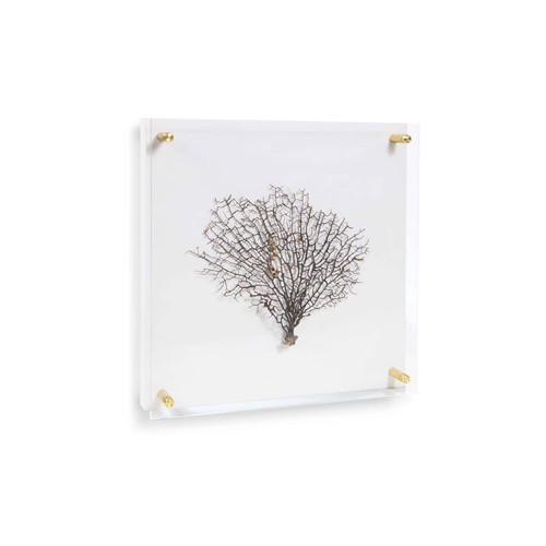 Sea Fan Wall Art on Acrylic Extra Small